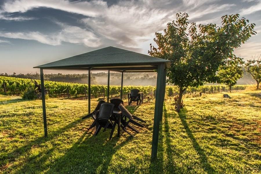 Typy zahradních párty stanů - jak vybrat ten pravý?