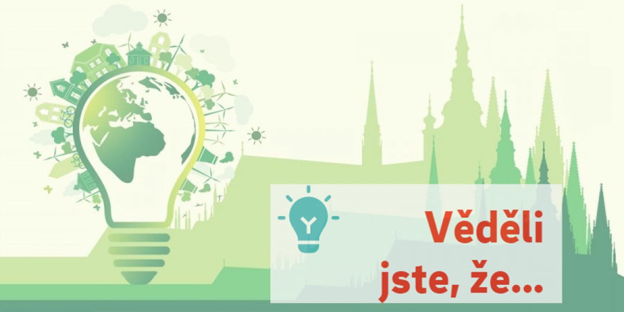 Zelená energie: Cena, dodavatelé a praktické rady
