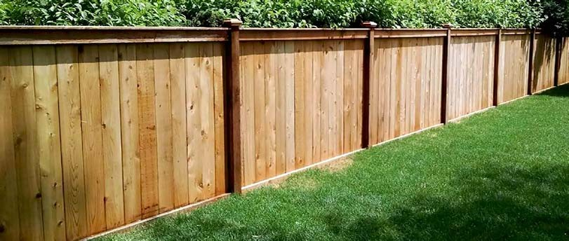 Ozdobný smrkový plot