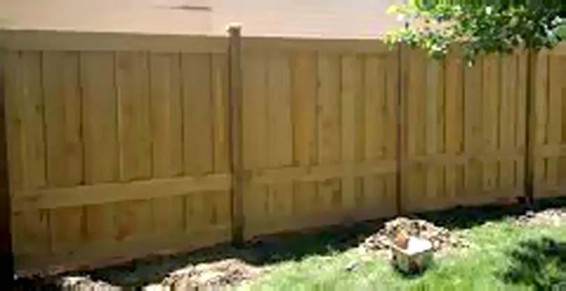 Přiblížení smrkového plotu