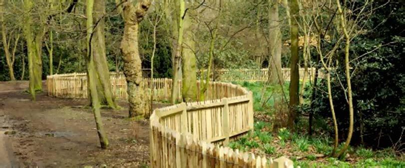 Dřevěný plot v parku